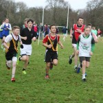 kerry colleges cross country 1