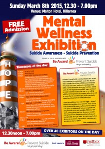 Mental Wellness Exhibition Poster
